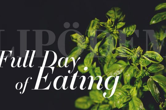 lipoedem mode Full Day of Eating – Lipödem-Ernährungstagebuch